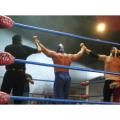 Wrestling Legends is the ultimate challenge for wrestling fans