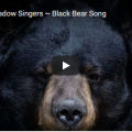Red Shadow Singers ~ Black Bear Song
